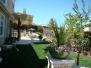 A Serene Garden