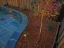 Backyard Patio Beautification