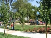 cardoza-park-city-of-milipitas-6